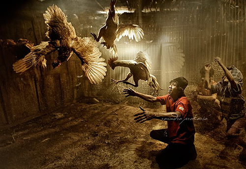 33 Rarindra Prakarsa Stunning Photos (1)