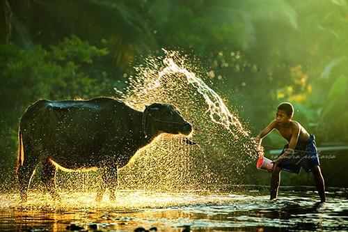 33 Rarindra Prakarsa Stunning Photos (13)