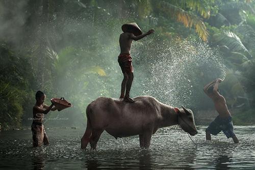 33 Rarindra Prakarsa Stunning Photos (22)
