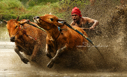 33 Rarindra Prakarsa Stunning Photos (28)