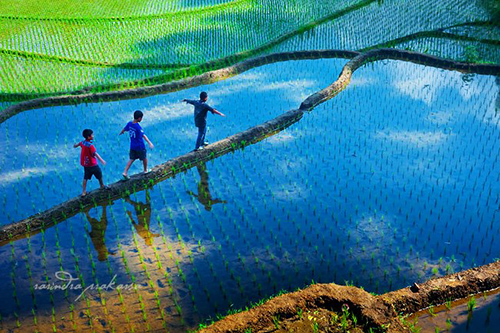 33 Rarindra Prakarsa Stunning Photos (32)