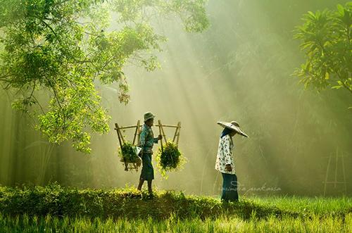 33 Rarindra Prakarsa Stunning Photos (33)