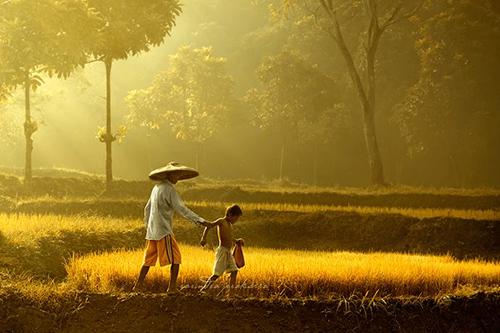 33 Rarindra Prakarsa Stunning Photos (9)