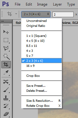 crop images in photoshop step 3