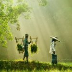 33 Stunning Photos from Rarindra Prakarsa
