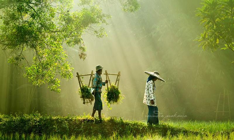33 Stunning Photos from Rarindra Prakarsa