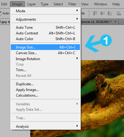 resize images in photoshop step 1