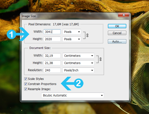 resize images in photoshop - step 2