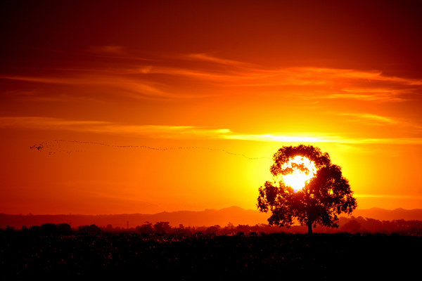 27 Stunning sunset photography examples - 1