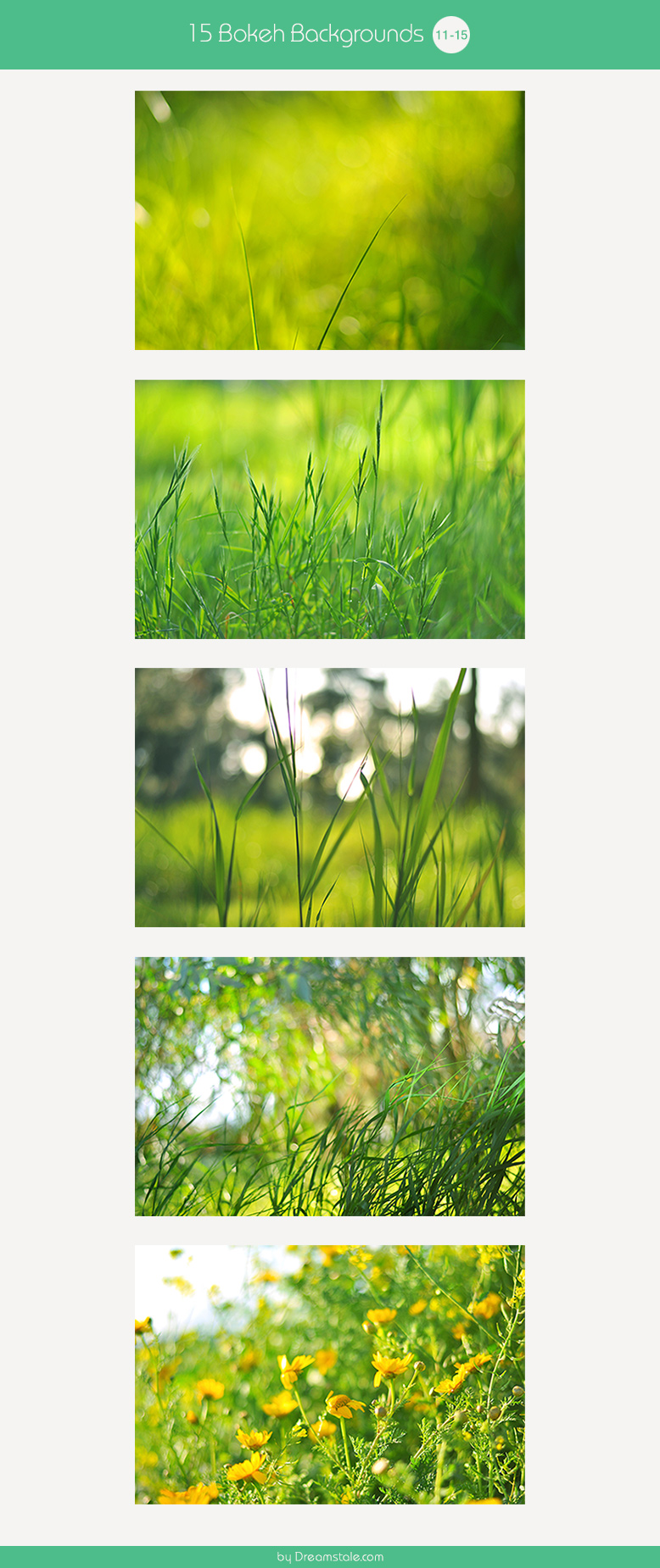 15-spring-bokeh-backgrounds-large-preview-11-15