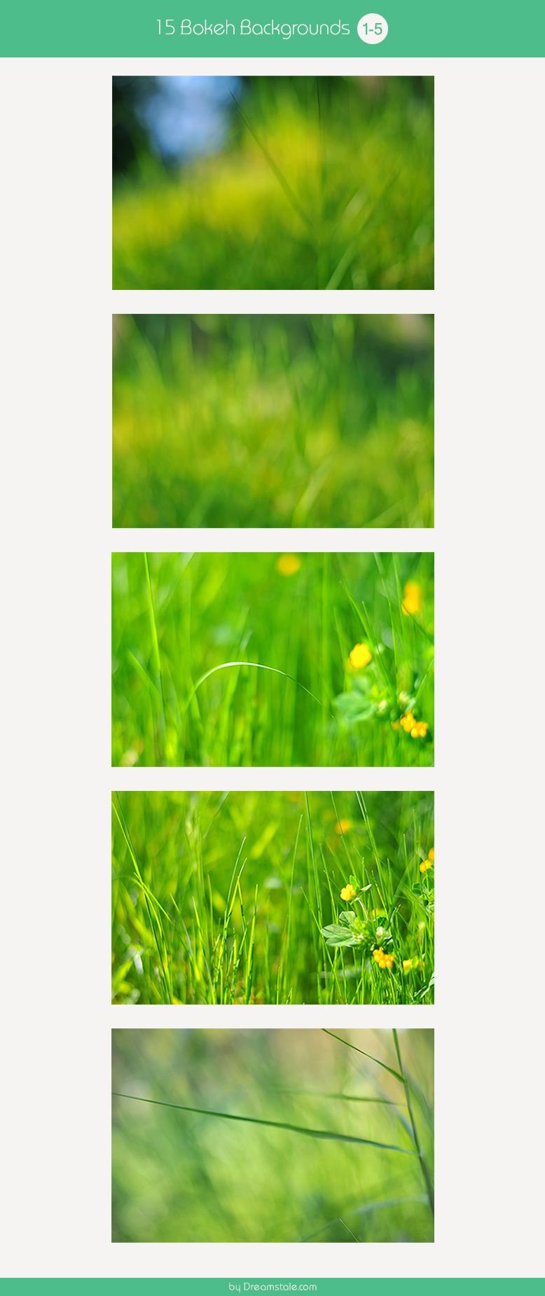 15-spring-bokeh-backgrounds-large-preview