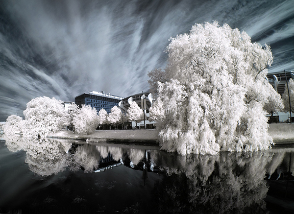 infrared photography 17