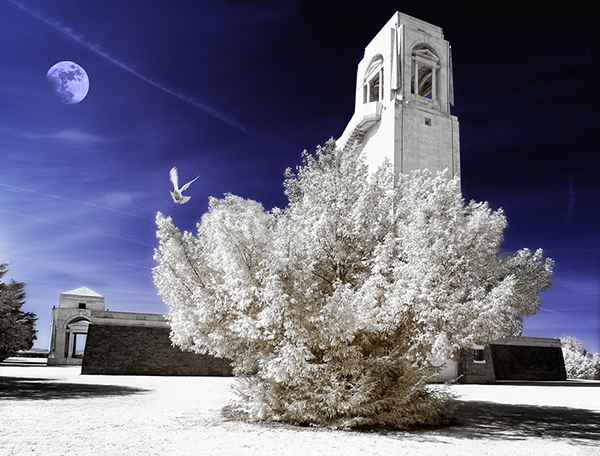 infrared photography 20