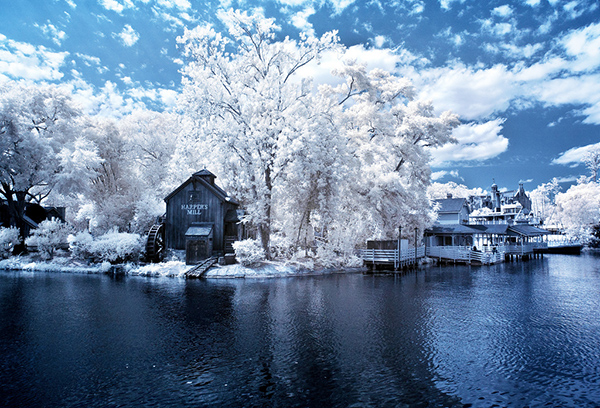 infrared photography 22