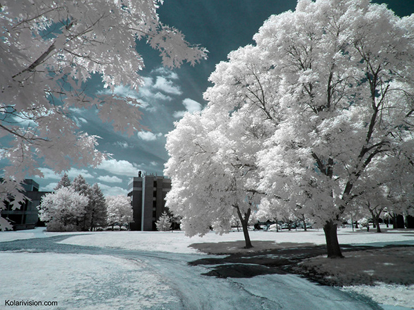 amazing infrared photography 32