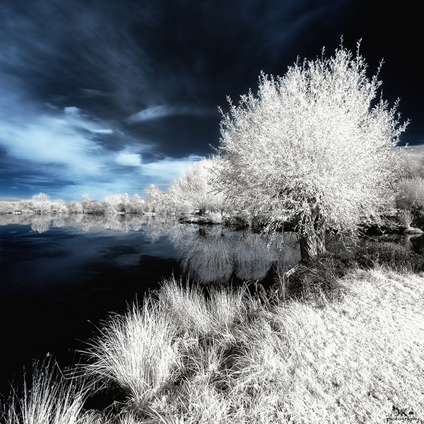amazing infrared photography (12)