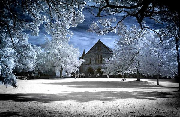 amazing infrared photography (15)