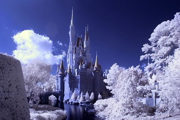 amazing infrared photography (16)