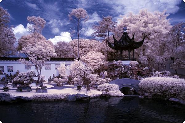 amazing infrared photography (3)