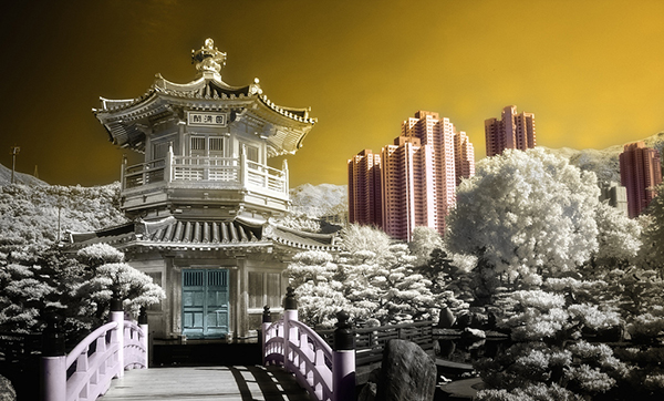 amazing infrared photography (4)