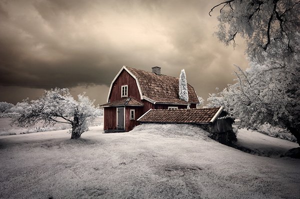 amazing infrared photography (7)