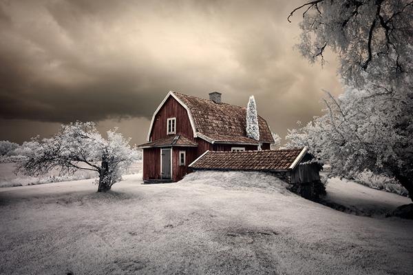 amazing infrared photography (7)