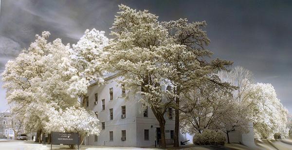 amazing infrared photography (9)