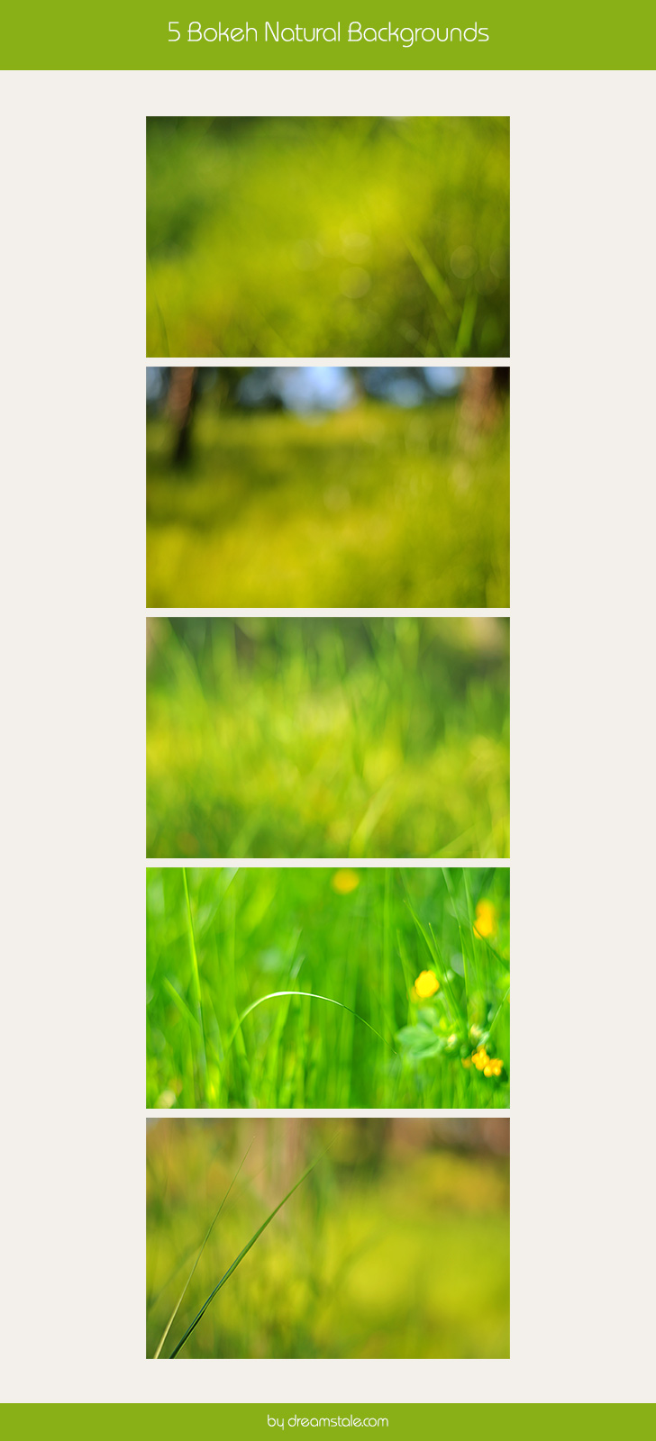 free-download-natural-bokeh-backgrounds-for-websites-large-preview