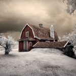 33 Amazing Near-Infrared Photos