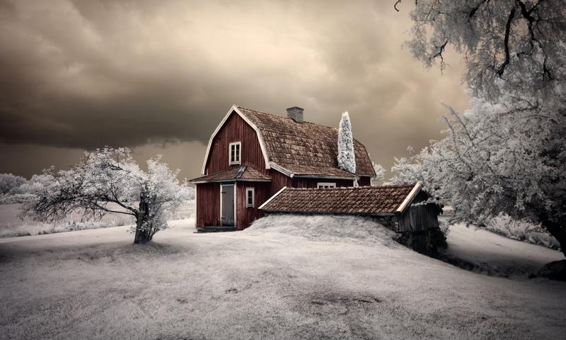 33 Amazing Near-Infrared Photos