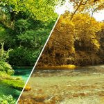 Tutorial: Turn Summer to Autumn in Photoshop